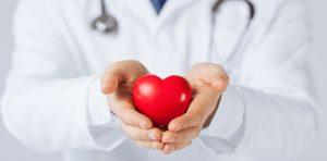 Kalbiniz Hakkında Bilgiler