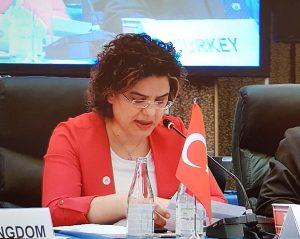 Bakan Yardımcısı Meşe, G20 Sağlık Bakanları Toplantısı'na Katıldı
