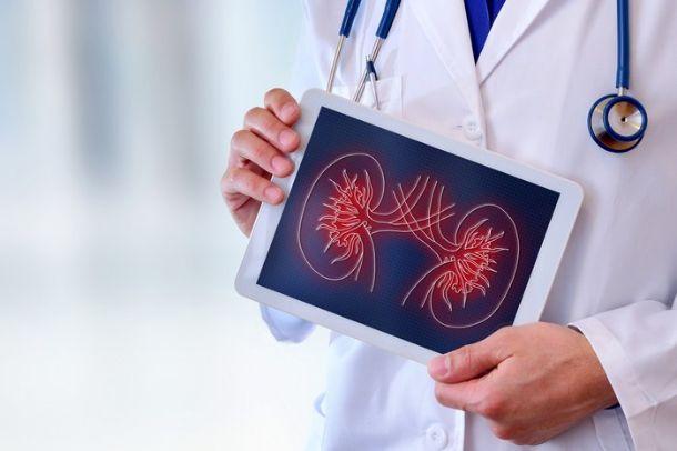 organ nakli olanlar ne kadar yaşar
