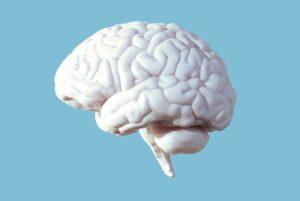 Bionaut Labs, nadir görülen pediatrik beyin bozukluğunu tedavi etmek için insani kullanım cihazı tanımını kazandı